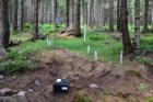 Sub-project I: research area Current state of forest and water ecosystems damage within the territory of Krkonoše SAC